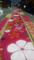 Xico, Ver., 19 de julio de 2018.- Desde temprana hora, pobladores iniciaron con la elaboraci�n del tradicional tapete de aserr�n en el marco de las fiestas en honor a Santa Mar�a Magdalena.
