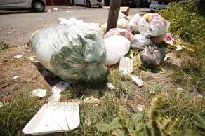 Veracruz, Ver., 15 de agosto de 2018.- La advertencia de multas económicas por parte del Ayuntamiento por tirar basura en la calle no espantó a los ciudadanos. Éste es el escenario diario de la avenida Eje Uno Poniente, en la Unidad Habitacional El Coyol.