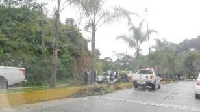 Xalapa, Ver., 17 de octubre de 2018.- Un accidente vial más se registró la tarde de este miércoles en la carretera Xalapa-Coatepec.