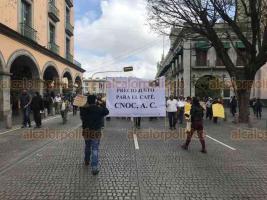 Xalapa, Ver., 15 de enero de 2019.- Cafetaleros marcharon por el centro de la capital en refuerzo a su protesta en contra de la empresa Nestlé. Por varios minutos mantuvieron cerrada la circulación de la calle Enríquez.