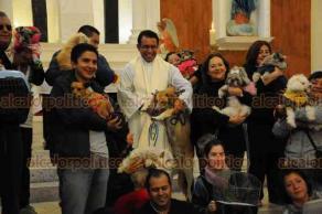 """Xalapa, Ver., 17 de enero de 2019.- Bendición de animales en la Rectoría """"Los Sagrados Corazones de Jesús y de María"""", en honor a San Antonio Abad, las personas acudieron con perros, gatos y algunas aves."""