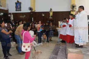 Córdoba, Ver., 17 de enero de 2019.- Como ya es tradición, se realizó la bendición de mascotas. Pericos, perros, gallinas, iguanas, ratones y tortugas fueron llevados a las iglesias que hoy celebran a San Antonio Abad, considerado protector de los animales.