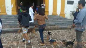 """Papantla, Ver., 19 de enero de 2019.- Cientos de personas arribaron a la Iglesia """"Nuestra Señora de la Asunción"""" para bendecir a sus mascotas, esto para celebrar a San Antonio Abad, protector de los animales."""
