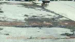 Veracruz, Ver., 17 de febrero de 2019.- Las calles de la colonia Lomas del Vergel y Reserva 2 se encuentran en pésimas condiciones. Habitantes de la zona exigen a la autoridad municipal reparar los baches, hoyancos y desperfectos que ya han costado refacciones de automovilistas.