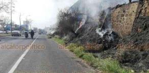 Xalapa, Ver., 23 de febrero de 2019.- Este sábado, también se registró un incendio de pastizal sobre carretera Xalapa-Veracruz, a la altura de la entrada a Las Trancas; el fuego fue sofocado por Bomberos.