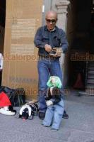 Ciudad de México, 24 de marzo de 2019.- En el marco del Día Mundial del Títere, titiriteros y marionetas desfilaron en el zócalo para impulsar y difundir su trabajo e informar que ellos abordan temas como el medio ambiente y sustentabilidad para programas educativos infantiles.