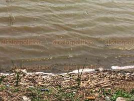 Veracruz, Ver., 17 de abril de 2019.- Pescadores y prestadores de servicios se dijeron preocupados luego de que hace dos semanas la laguna de San Julián se tiñe de rojo en algunas zonas.