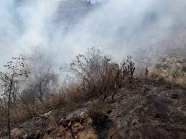 Maltrata, Ver., 22 de abril de 2019.- Nuevo incendio se registra en la carretera Córdoba-Puebla que ocasiona que se detenga el tráfico. Bomberos, PC regional, PC Maltrata ya trabajan para sofocarlo con pipas de agua.