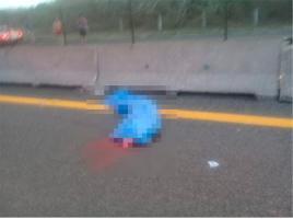 La Antigua, Ver., 24 de mayo de 2019.- El cuerpo de la niña quedó tendido sobre la autopista Cardel-Veracruz; al lugar acudieron elementos de la Policía Federal y elementos de Tránsito del Estado, delegación Cardel.