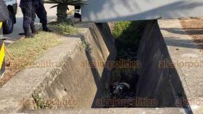 Coatzacoalcos, Ver., 25 de mayo de 2019.- Un motociclista que circulaba sobre Javier Anaya Villazón, en la colonia El Tesoro, perdió la vida este sábado por la tarde, luego de que presuntamente un taxi lo impactó y tras perder el control cayó a una cuneta de aguas negras.
