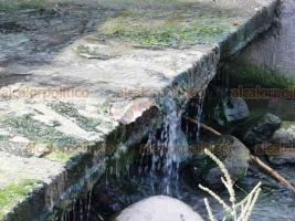 Boca del Río, Ver., 18 de agosto de 2019.- Una de las playas más concurridas del municipio es contaminada desde hace meses por escurrimientos de aguas negras que llegan al mar, sin que la empresa CAB y el Ayuntamiento local intervengan.