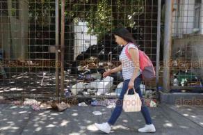 Veracruz, Ver., 22 de agosto de 2019.- De acuerdo a trabajadores, se han acumulado más de 4 toneladas de basura en el Hospital Regional de Veracruz, desechos sólidos de cafetería e insumos varios. El Ayuntamiento informó que por el cierre de su basurero, dejará de recoger basura en las dependencias del Gobierno Estatal.