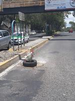 Xalapa, Ver., 24 de agosto de 2019.- Este sábado, en redes sociales se reportó que alguien colocó una llanta con flores en un bache en Circuito Presidentes, para avisar a automovilistas del desperfecto en el pavimento.
