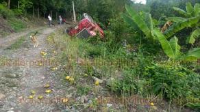 Papantla, Ver., 11 de noviembre de 2019.- El torton cayó a un pequeño barranco, dejando como saldo cuatro muertos y siete heridos; el chofer responsable se fugó.
