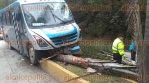 Coatepec, Ver., 18 de noviembre de 2019.- Un camión de la línea Excélsior se accidentó en la carretera Xalapa-Coatepec, a la altura de Río Sordo. El conductor circulaba a exceso de velocidad y terminó sobre el camellón, derribando una palmera. No hubo lesionados.