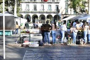 """Xalapa, Ver., 9 de diciembre de 2019.- En el parque Juárez, estudiantes y docentes del CONALEP presentaron la """"Muestra del Quehacer Educativo; Ideas en Acción""""."""