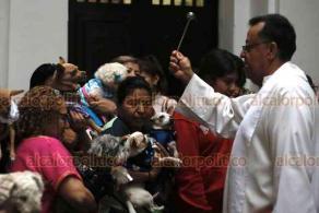 Veracruz, Ver., 17 de enero de 2020.- Esta tarde se realizó la bendición de animales en honor a San Antonio Abad. Un centenar de mascotas fueron rociadas con agua bendita por el padre Víctor Díaz, para posteriormente dar paso a la misa.