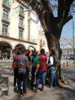 Xalapa, Ver., 28 de enero de 2020.- Por el riesgo que representan dos árboles del Parque Juárez para automovilistas y transeúntes, autoridades determinaron que se talarán. La regidora Érika Yerania y ambientalistas supervisaron los ejemplares. Poco después, en uno de los árboles colocaron un letrero que pide no cortarlo.
