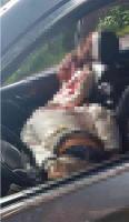 Huatusco, Ver., 22 de febrero de 2020.- Los delincuentes abatidos viajaban en una camioneta Nissan X-Trail gris, sin placas. En la unidad había un fusil AK-47 con un cargador y una pistola tipo escuadra.
