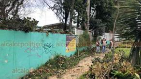 """Xalapa, Ver., 26 de febrero de 2020.- Un árbol fue derribado por el fuerte """"norte"""" dentro de la escuela """"Carlos A. Carrillo"""", en la avenida Ávila Camacho. Personal municipal retiró las ramas que cayeron sobre la acera. Barda perimetral registró dos fracturas por este incidente."""