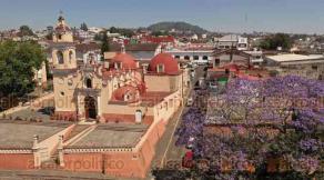Xalapa, Ver., 27 de marzo de 2020.- Las jacarandas colorean de violeta algunas de las calles de esta capital, que lucen cada vez más despejadas ante la contingencia del COVID-19.