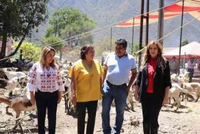 Maltrata, Ver., 28 de marzo de 2020.- Este viernes, Rebeca Quintanar, titular del DIF Estatal, destacó que los apoyos otorgados son para tener un trabajo y generar recursos que beneficien a las familias.