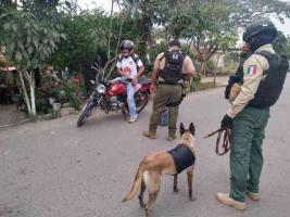Martínez de la Torre, Ver., 10 de abril de 2020.- Seguridad Pública informó que, este viernes, 120 elementos policiales, 48 unidades, un helicóptero y agentes caninos implementan un operativo de seguridad en este municipio.