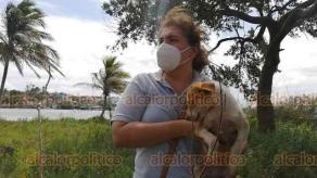 Alvarado, Ver., 30 de mayo de 2020.- Asociaciones protectoras de animales rescataron a 3 mascotas de la