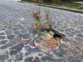 Xalapa, Ver., 6 de junio de 2020.- Bache que se encuentra en la calle Miguel Alemán, entre Ávila Camacho e Ignacio de la Llave, sigue sin ser reparado a pesar del riesgo que representa para peatones y automovilistas.