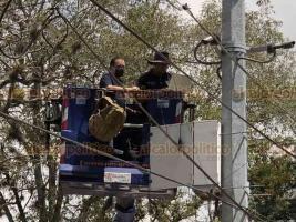 Xalapa, Ver., 2 de julio de 2020.- Personal del C-4 (Centro Estatal de Control, Comando, Comunicaciones y Cómputo) revisó las cámaras de vigilancia en la avenida Ávila Camacho.