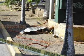 Veracruz, Ver., 10 de julio de 2020.- Una persona en aparente condición de calle perdió la vida en la alameda de la Avenida Salvador Díaz Mirón, en la zona Centro, tomando conocimiento personal de la SSP, Naval y Guardia Nacional.