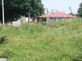 Veracruz, Ver., 4 de agosto de 2020.- Vecinos de la colonia Vista Mar exigieron a las autoridades limpiar la zona para evitar que continúen los asaltos y la presencia de mosquitos, pues temen contagios de dengue.