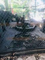 Veracruz, Ver., 5 de agosto de 2020.- Ambientalistas lamentan que Ayuntamiento tenga abandonado al zoológico. En 2017 contaba con 406 ejemplares de vida silvestre. Hoy sólo quedan 246, muchos de ellos en condiciones insalubres; algunos están enfermos. Hay jaulas rotas y sin agua, además de mucha basura.