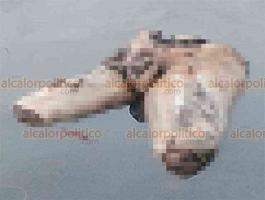 Boca del Río, Ver., 10 de agosto de 2020.- La mitad del cuerpo de un hombre apareció flotando en el río, cerca del Muelle del Pescador ubicado junto al Centro de Estudios del Instituto Tecnológico.