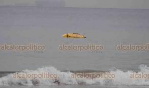Veracruz, Ver., 11 de agosto de 2020.- Operativo se desplegó en playa Villa del Mar, luego del reporte de posible cuerpo flotando en el mar. Guardavidas sacaron el bulto que resultó ser hule espuma amarrado, parecía la silueta de una persona. Policías estatales y navales acordonaron la zona.