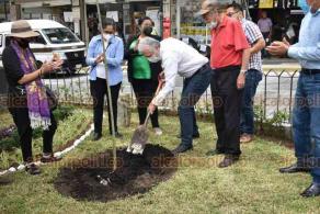 Xalapa, Ver., 26 de septiembre de 2020.- El alcalde Hipólito Rodríguez estuvo presente en la siembra de un nuevo árbol en la Plazoleta del Carbón, también estuvieron presentes autoridades municipales y colaboradores de Protección Civil.