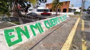 Veracruz, Ver., 28 de septiembre de 2020.- Feministas colocaron pintas adhesivas sobre el camellon Martí del fraccionamiento Reforma para exigir aborto legal.