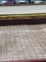 """Xalapa, Ver., 18 de octubre de 2020.- Lector acusa que se abandonó la obra para instalar reductores en la Xalapa-Coatepec. """"Aunque en dos de los puntos ya se terminó la primera parte no se han abierto a la circulación; la otra parte se encuentra sólo tapada con escombro y en La Florida solo tendieron la malla de refuerzo"""", critica."""