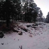 Perote, Ver., 18 de enero de 2021.- El Cofre de Perote amaneció de blanco este lunes, luego de que ayer por la tarde-noche se registrara la tercera caída de nieve.