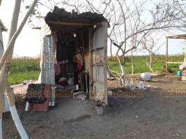 """Veracruz, Ver., 19 de enero de 2021.- Aproximadamente 20 familias levantaron nuevamente sus """"casas"""" hechas de láminas, palos y cartón, luego que fueran desalojadas hace apenas 4 días de inmediaciones de la Laguna Olmeca, que es Área Natural Protegida."""