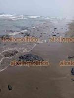 Tecolutla, Ver., 15 de abril de 2021.- A lo largo de aproximadamente 8 kilómetros de playas se hallaron restos de chapopote. Ciudadanos y prestadores de servicios temen que esto perjudique más las actividades turísticas afectadas por la pandemia.