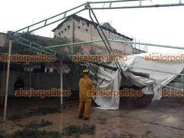 """Coatepec, Ver., 6 de mayo de 2021.- La lluvia sigue tirando árboles en el Pueblo Mágico, ahora cayó uno al interior de la secundaria federal """"Ignacio de la Llave""""."""