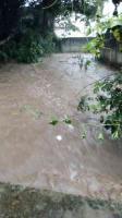 Coatepec, Ver., 13 de junio de 2021.- Protección Civil Municipal reportó que debido a las fuertes lluvias de esta tarde, se registraron anegaciones en las colonias San Jerónimo y Díaz Mirón.