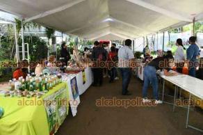 """Xalapa, Ver., 17 de junio de 2021.- Con ventas de productos de la Capital y la región, este jueves inició el evento Reactiva Xalapa Expo Consume Local, en el parque """"Doña Falla""""."""