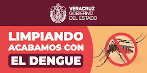 Prevencion del dengue